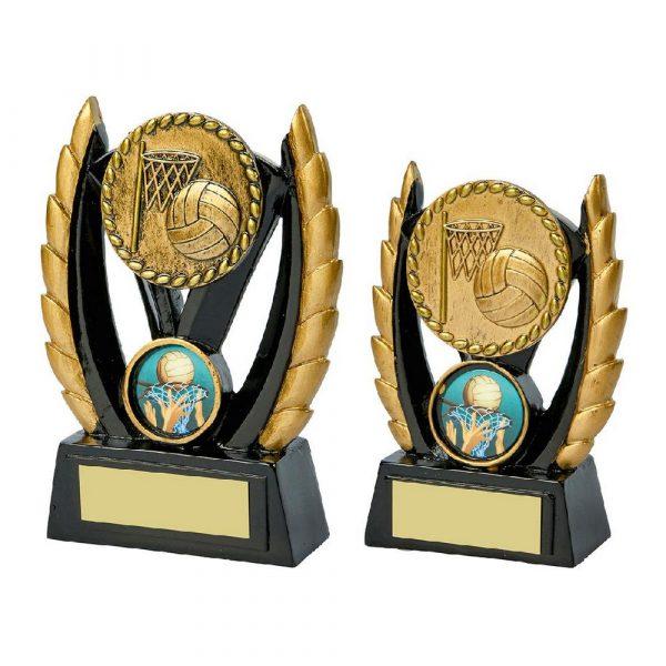 Black & Gold Resin Award