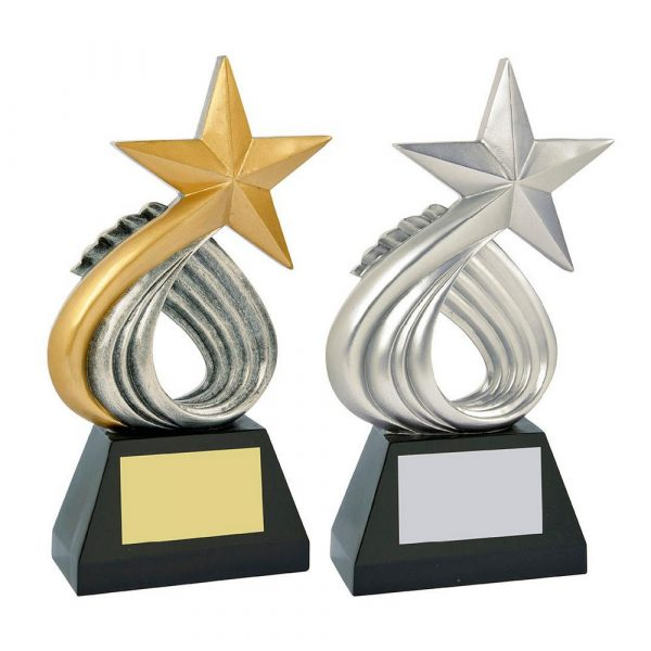 Large Silver Resin Star Award