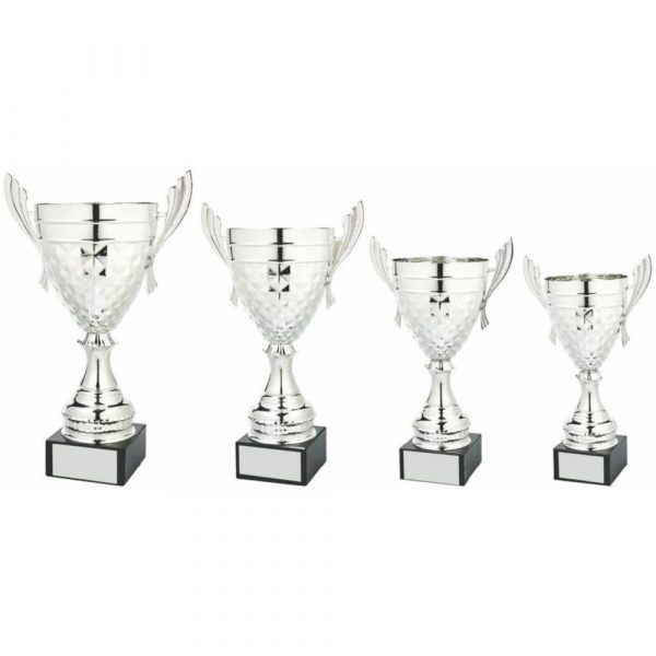 Large Silver Presentation Cup with Handles
