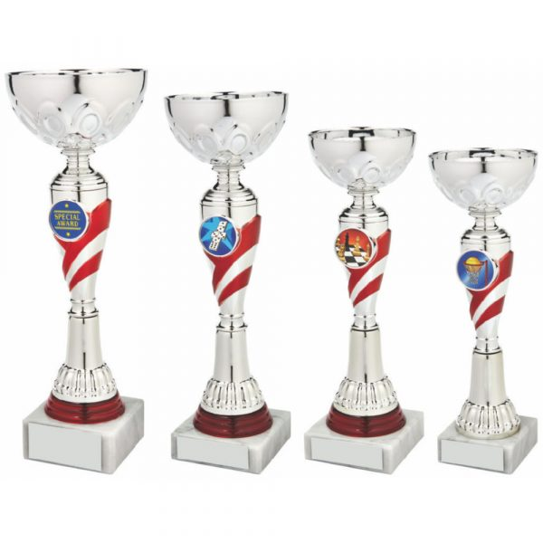 Silver/Red Trophy Cup