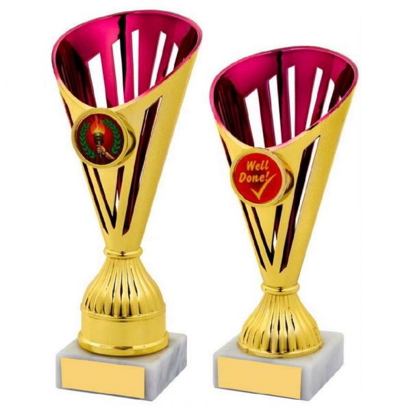 Gold/Pink Trophy Award